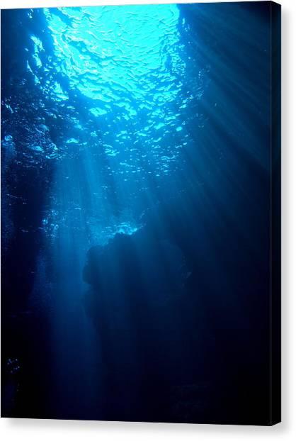 Underwater Sunlight Canvas Print by Takau99