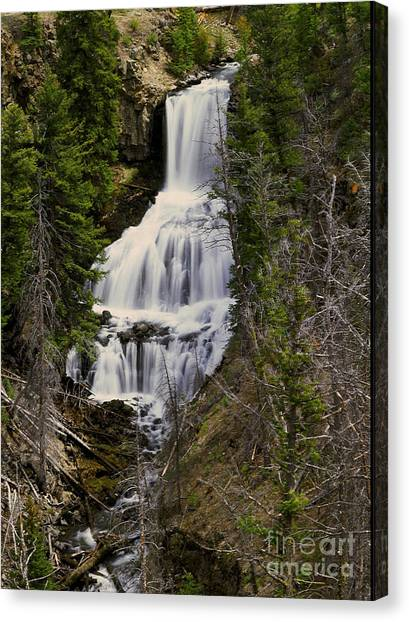 Undine Falls On Lava Creek Canvas Print by Dennis Hammer