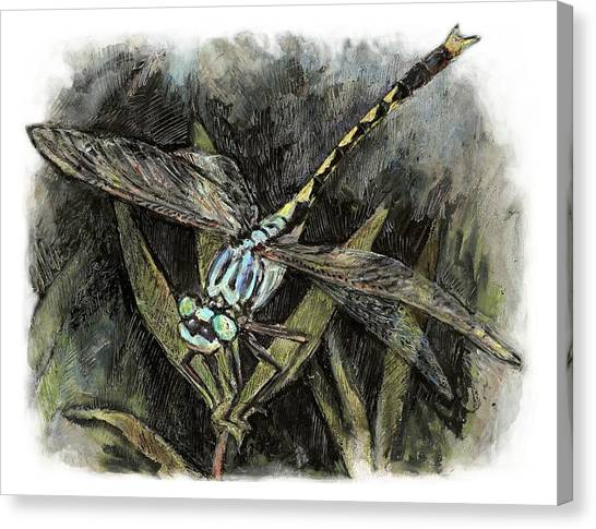 Unicorn Clubtail Canvas Print