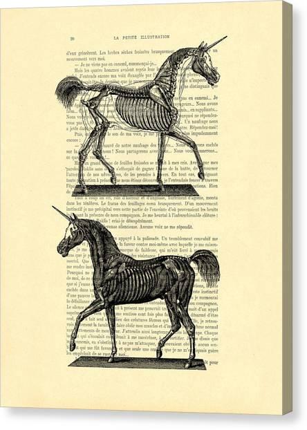 Anatomy Canvas Print - Unicorns Anatomy by Madame Memento
