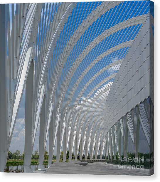 University Arching Lines Canvas Print