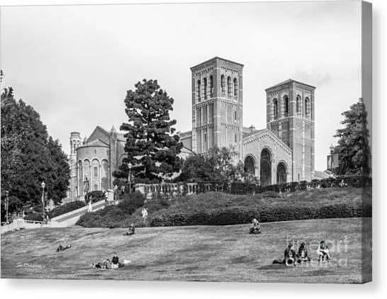 Ucla Canvas Print - University Of California Los Angeles Landscape by University Icons