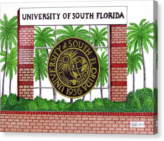 University Of South Florida Canvas Print - University Of South Florida by Frederic Kohli
