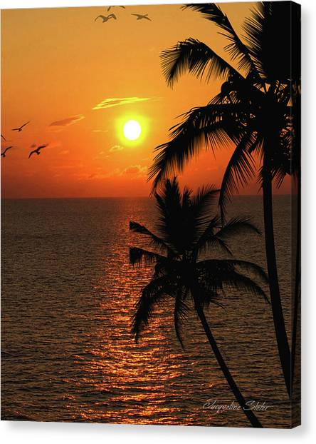 Unknown Paradise Canvas Print