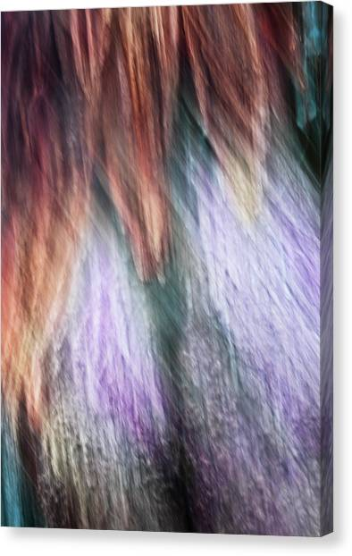 Untitled #1160169, From The Soul Searching Series Canvas Print