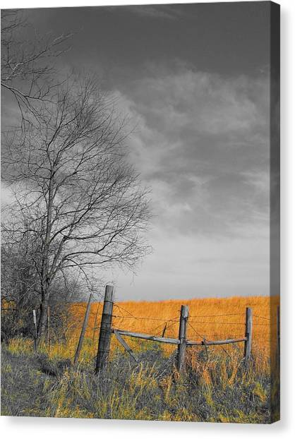 Canvas Print featuring the photograph Untitled by Dylan Punke