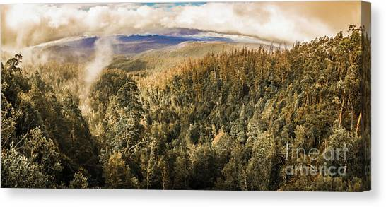 Foggy Forests Canvas Print - Untouched Wild Wilderness by Jorgo Photography - Wall Art Gallery