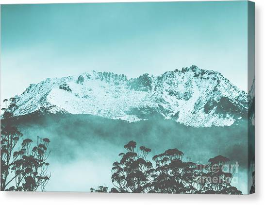 Trees In Snow Canvas Print - Untouched Winter Peaks by Jorgo Photography - Wall Art Gallery
