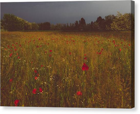 Upcoming Thunderstorm Canvas Print