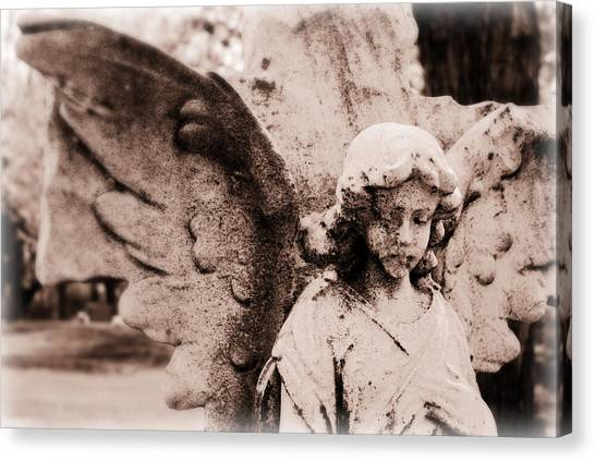 Upon Angel's Wings Canvas Print