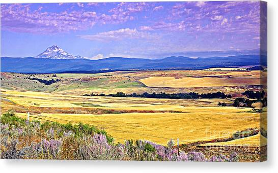 Upon Golden Fields Canvas Print