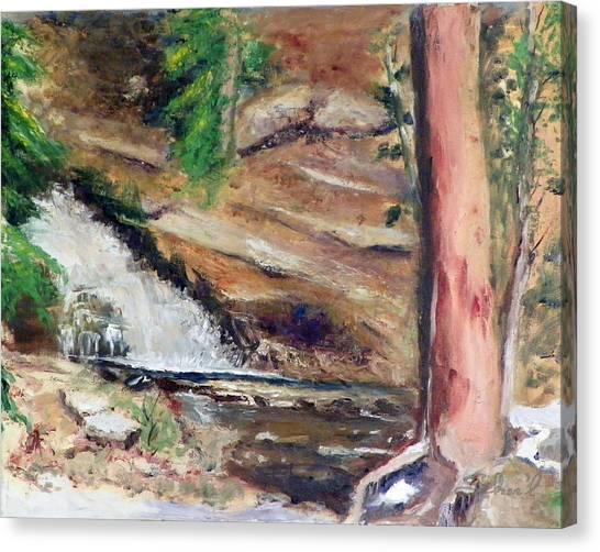Upper Provo River Falls Canvas Print