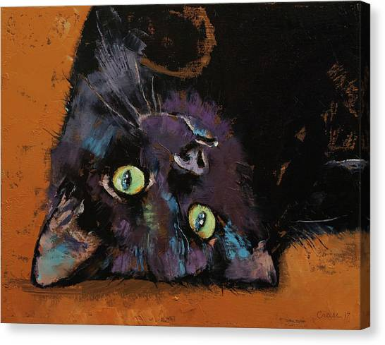 Panthers Canvas Print - Upside Down Kitten by Michael Creese