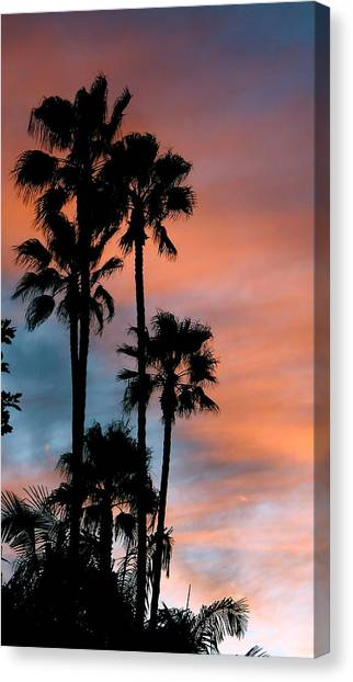 Urban Palms Canvas Print by Peter Breaux
