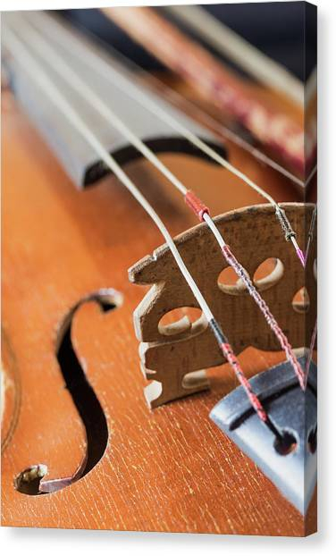 fiddles canvas prints page 29 of 38 fine art america