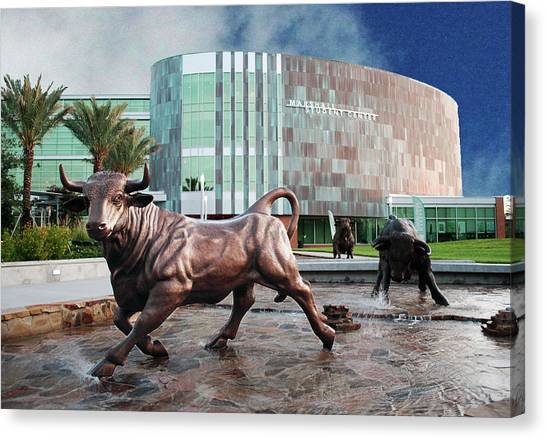 Usf Tampa Canvas Print by Francesco Roncone