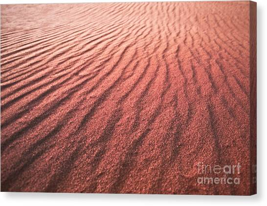 Utah Coral Pink Sand Dunes Canvas Print by Ryan Kelly