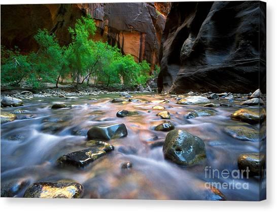 Utah - Virgin River 5 Canvas Print
