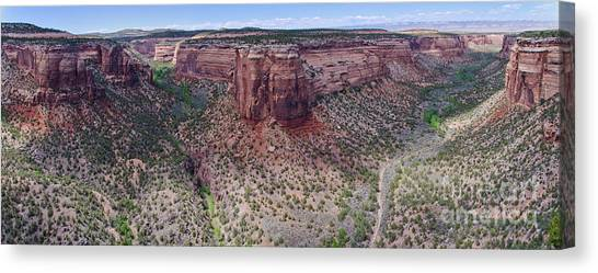 Ute Canyon Canvas Print