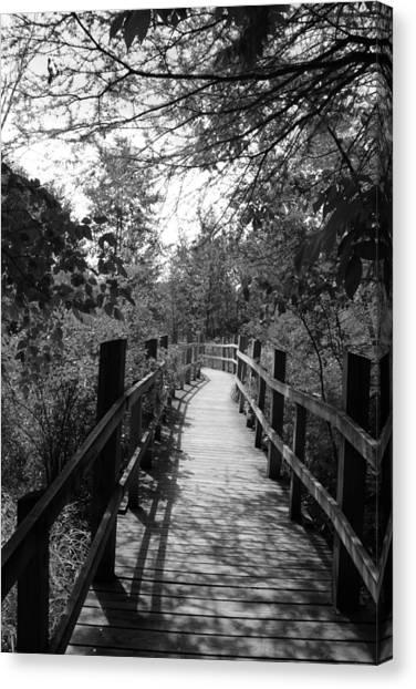 University Of Wisconsin - Madison Canvas Print - Uw Arboretum Boardwalk by Douglas Ransom