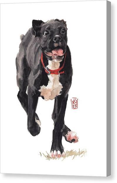 Watercolor Pet Portraits Canvas Print - Valentine by Debra Jones
