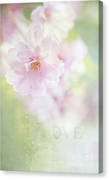 Valentine Love Canvas Print