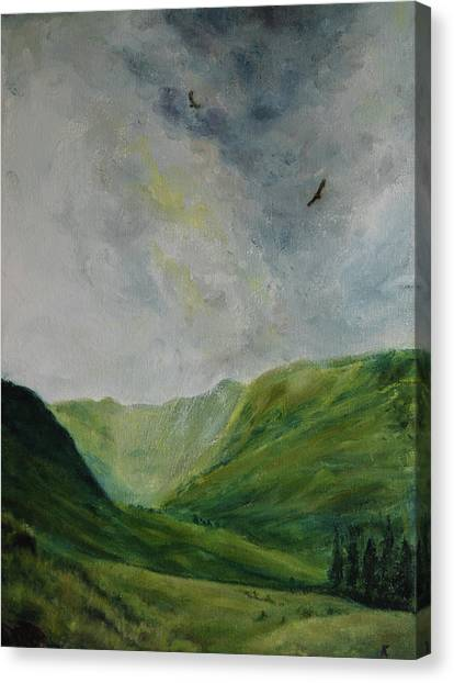 Valley Of Eagles Canvas Print