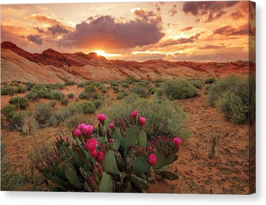 Valley Of Fire Canvas Print - Valley Of Fire by Johnny Adolphson