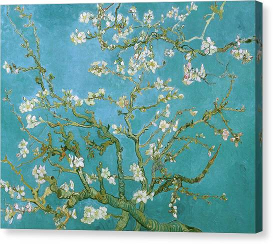 Dad Canvas Print - Van Gogh Blossoming Almond Tree by Vincent Van Gogh