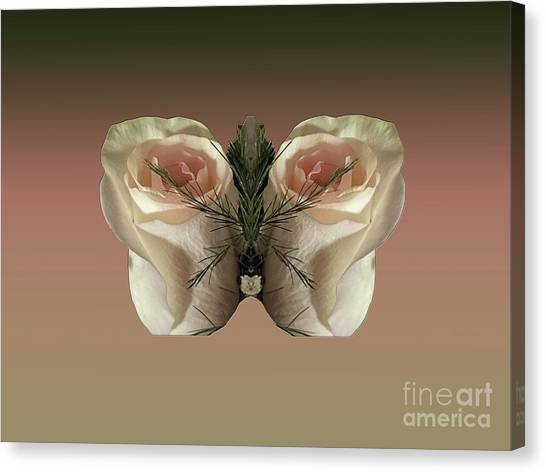 Vanilla Butterfly Rose Canvas Print