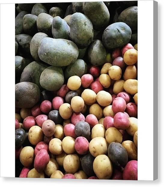 Potato Canvas Print - Variety Of Organic Potatoes At The by Juan Silva