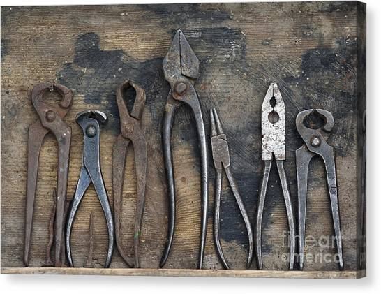Various Forceps Canvas Print
