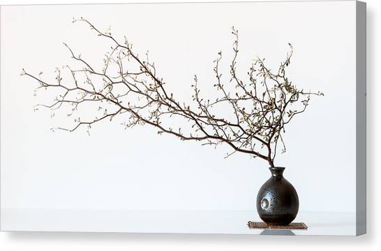 Branch Canvas Print - Vase And Branch by Prbimages