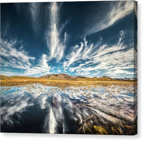 Canvas Print featuring the photograph Veins Of Earth And Sky // Yellowstone National Park  by Nicholas Parker