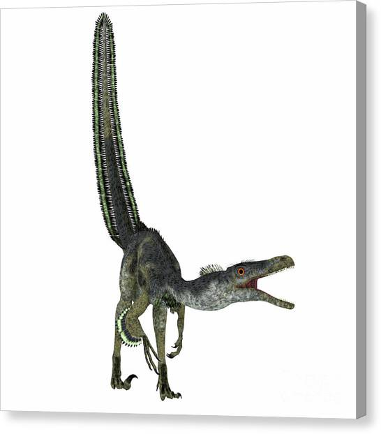 Velociraptor Canvas Print - Velociraptor Dinosaur On White by Corey Ford