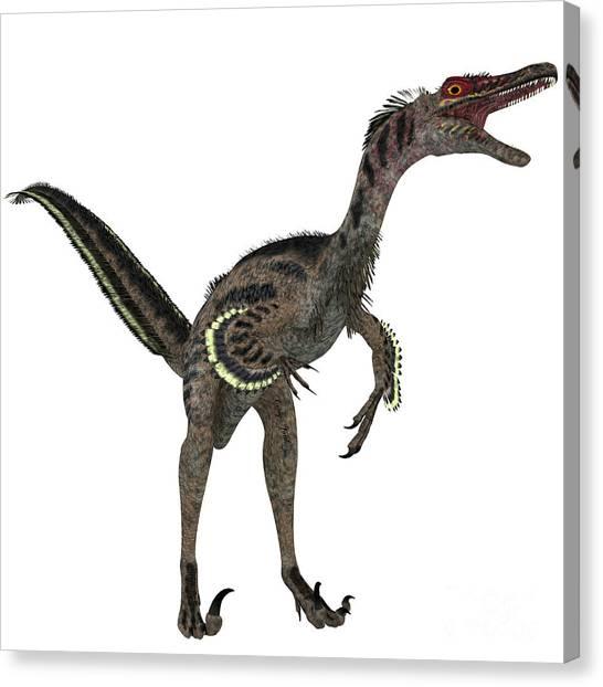 Velociraptor Canvas Print - Velociraptor On White by Corey Ford
