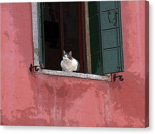 Venetian Cat In Window Canvas Print