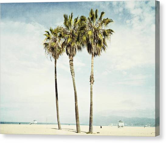 Palm Trees Canvas Print - Venice Palms  by Bree Madden