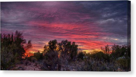 Verigated Sky Canvas Print