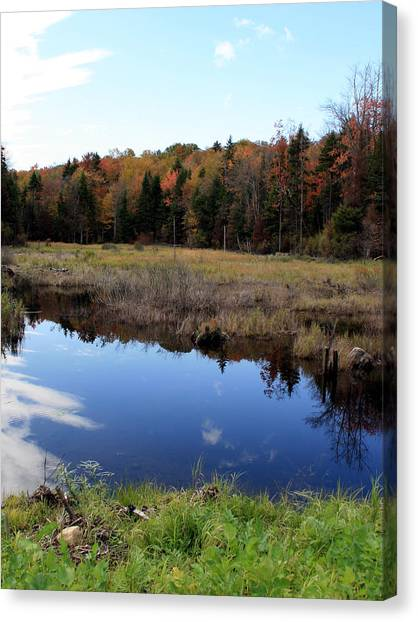 Vermont Reflections 1 Canvas Print by George Jones