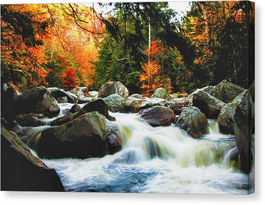 Vermonts Fall Color Rapids Canvas Print