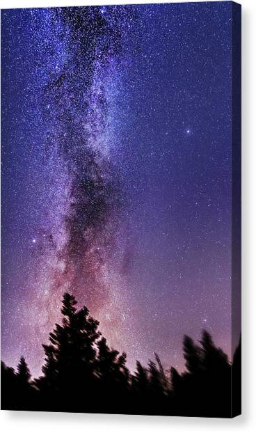 Vertical Milky Way Canvas Print