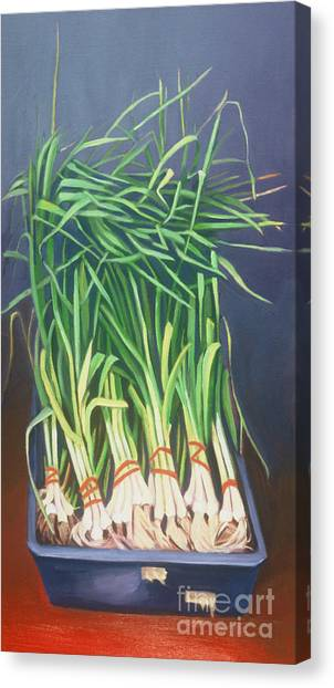 Vertical Scallions Canvas Print by Natasha Harsh