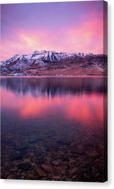 Vertical Winter Timp Reflection. Canvas Print