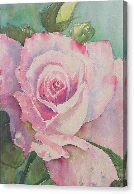 Very Rose  Canvas Print