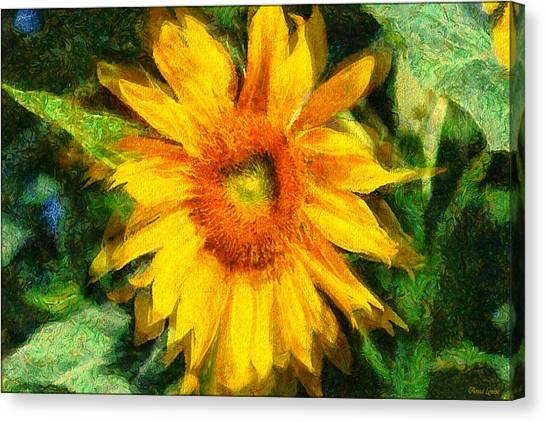 Very Wild Sunflower Canvas Print