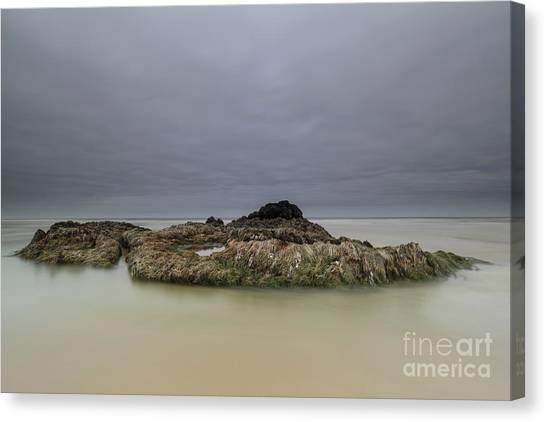 Seagrass Canvas Print - Vessel by Masako Metz