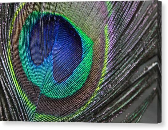 Vibrant Green Feather Canvas Print