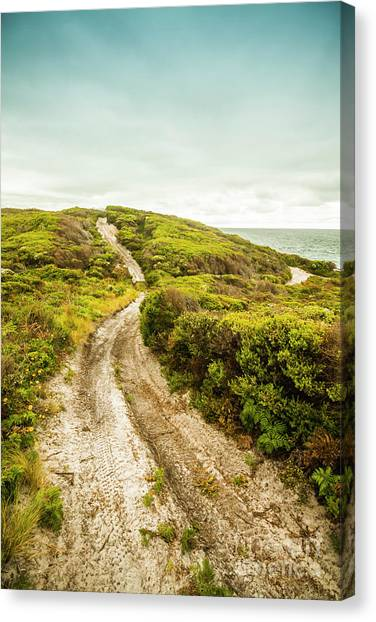 Harbour Canvas Print - Vibrant Green Hills And Ocean Tracks by Jorgo Photography - Wall Art Gallery