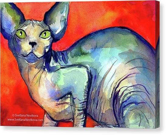 Animal Canvas Print - Vibrant Watercolor Sphynx Painting By by Svetlana Novikova